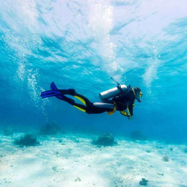 Divers' Heaven: Hawaiian Experience
